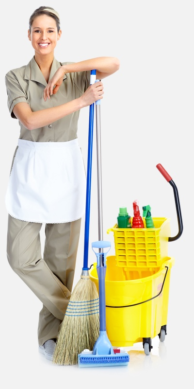house cleaners auckland commercial residential cleaning franklin orewa karaka